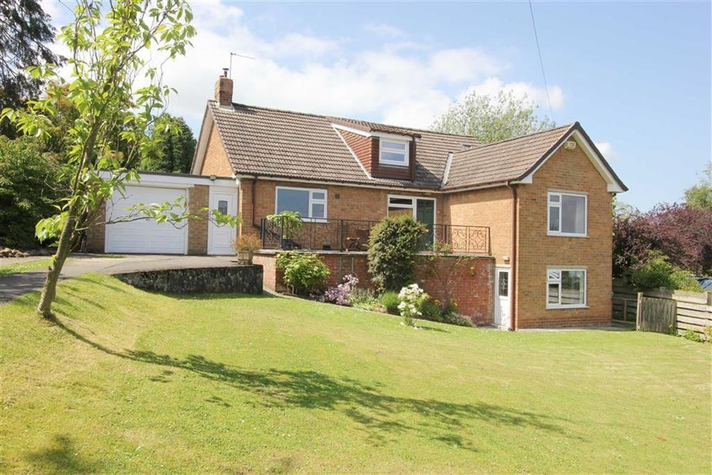 4 Bedrooms Detached Bungalow for sale in Bank Lane, Faceby
