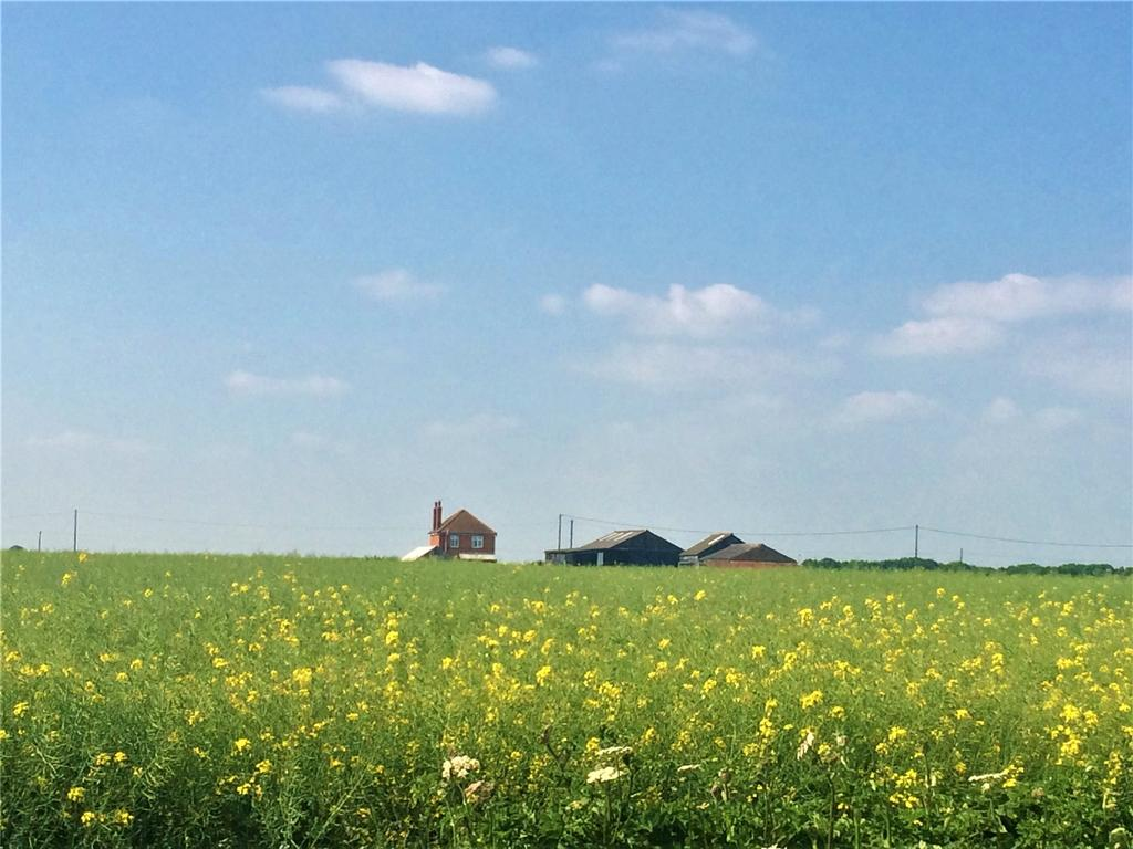 Land Commercial for sale in Anwick Fen, Sleaford, NG34