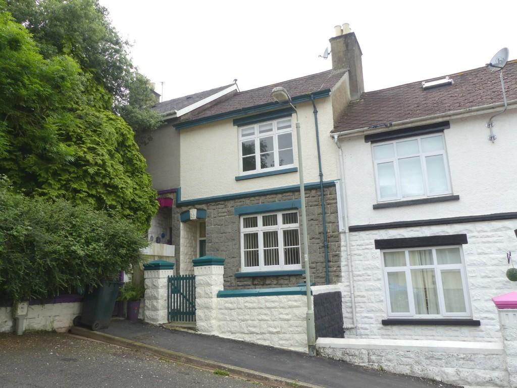 2 Bedrooms Terraced House for sale in George Street, Newton Abbot