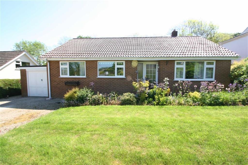 Knighton Powys Property For Sale