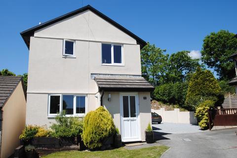 3 bedroom detached house for sale - Abbots Meadow, Chittlehampton