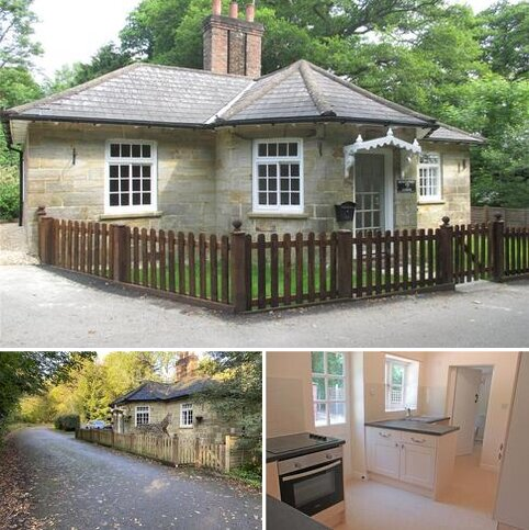 2 bedroom detached bungalow to rent - Henfield Road, Partridge Green, West Sussex, RH13
