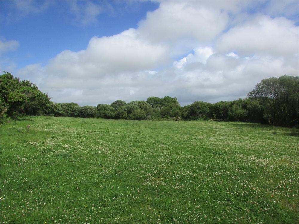 Between Camrose And Treffgarne Camrose Haverfordwest Pembrokeshire Land For Sale 163 35 000