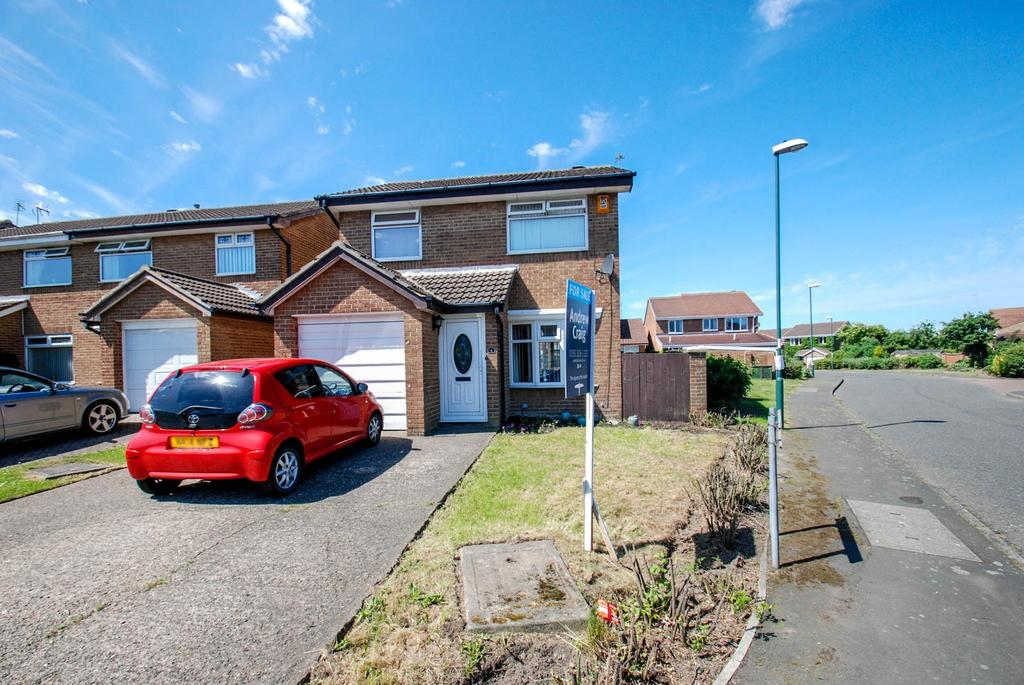 3 Bedrooms Detached House for sale in Dykelands Way, South Shields