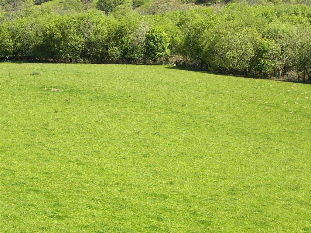 Farm Land Commercial for sale in Part of Hafodymaidd, Pumpsaint, Llanwrda