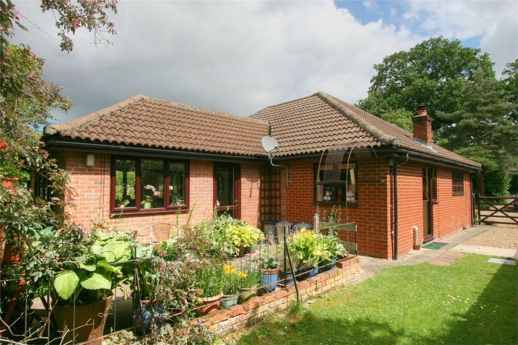 4 Bedrooms Detached Bungalow for sale in New North Road, ATTLEBOROUGH, Norfolk
