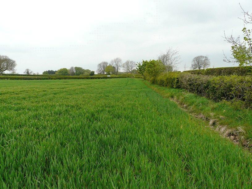 Land Commercial for sale in Moor Road, Bishop Monkton, Harrogate, North Yorkshire, HG3