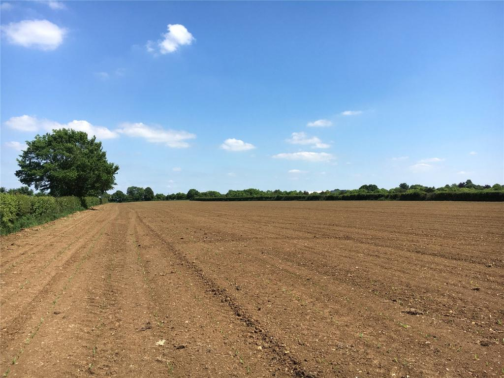 Land Commercial for sale in Lot 1 Known As Northover, Ilchester, Somerton, Somerset, TA11