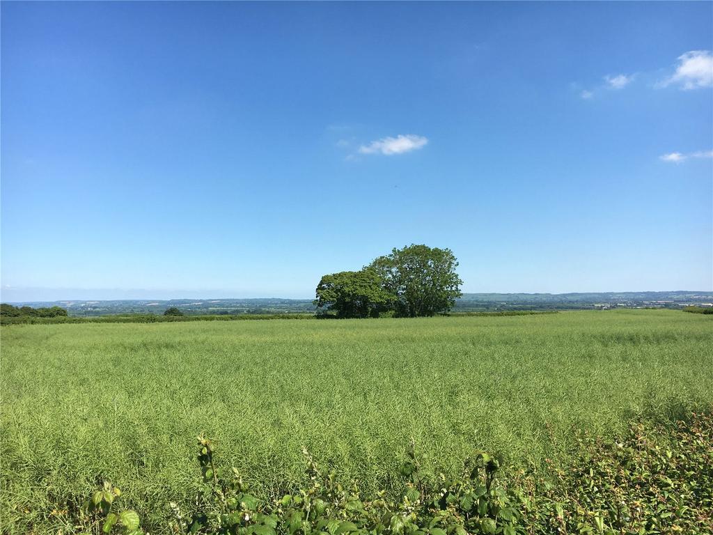 Land Commercial for sale in Lot 5 - Land At Kingsdon Hill, Kingsdon, Somerton, Somerset, TA11