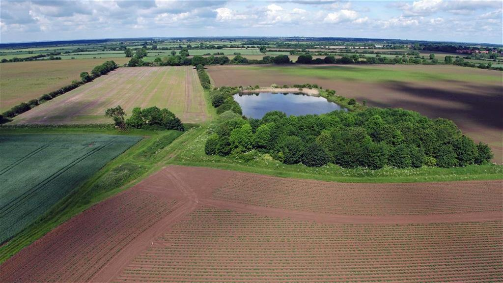 Land Commercial for sale in West Hall Farm, Carlton-le-moorland, Lincoln, Lincolnshire