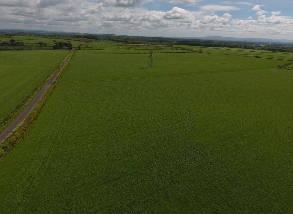 Farm Land Commercial for sale in Longtown, Carlisle, Cumbria CA6