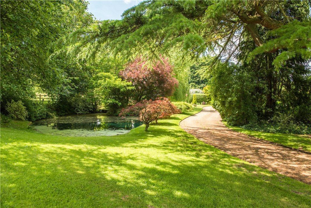 Copse, Natural Pond