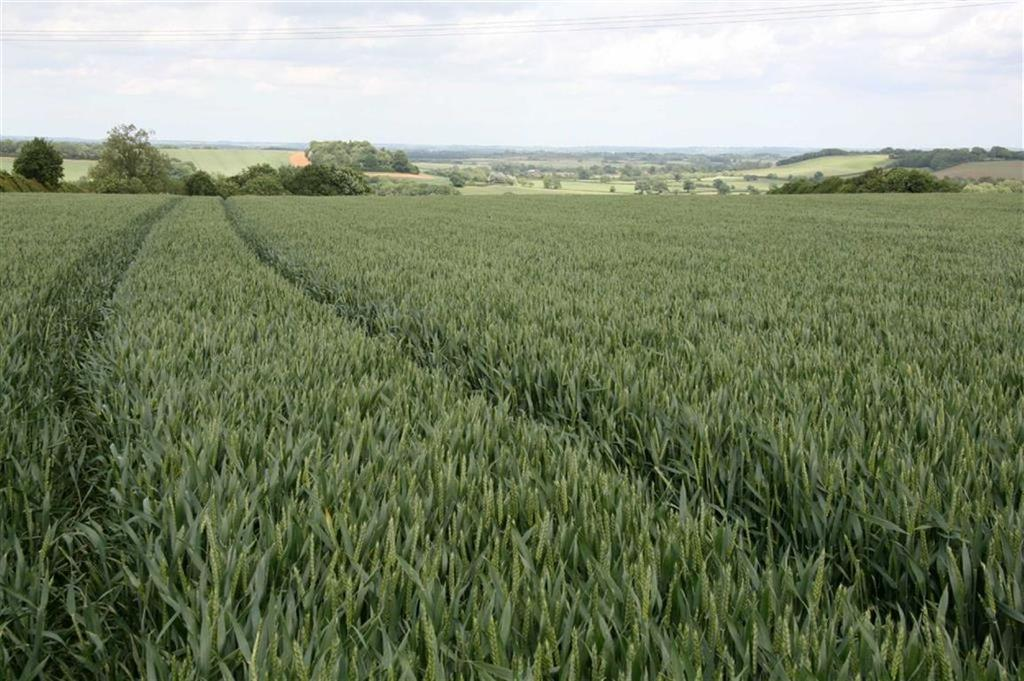 Farm Land Commercial for sale in With Central Building, Sibford Gower, Oxfordshire