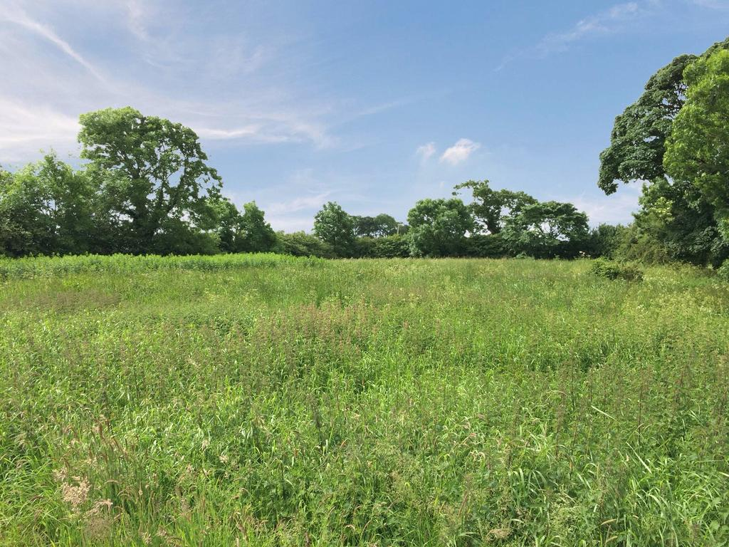 Land Commercial for sale in House Building Plot, Chapeltoun Terrace, By Stewarton, North Ayrshire, KA3