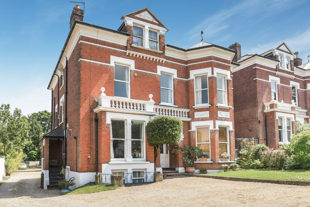 2 Bedrooms Flat for sale in Hermitage Road London SE19