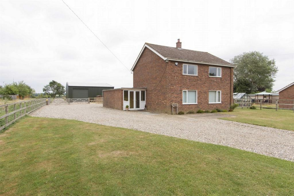 3 Bedrooms Detached House for sale in Sunnyside Paddocks, Bunwell Street, Bunwell, Norwich, Norfolk