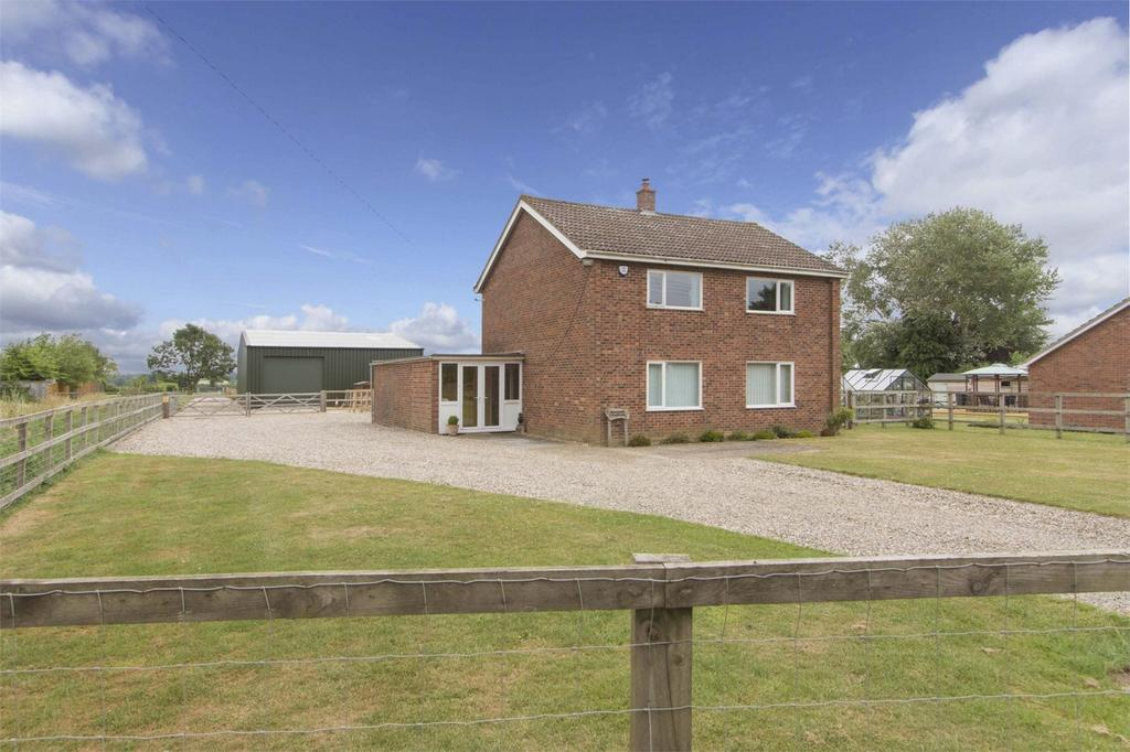 3 Bedrooms Detached House for sale in Bunwell Street, Bunwell, Norfolk