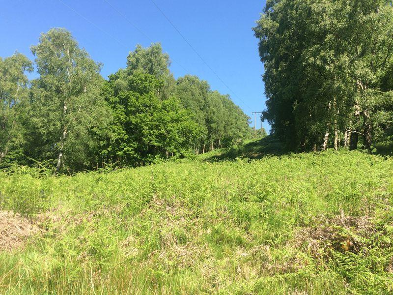 Land Commercial for sale in 28.07 Acres Of Pasture and Woodland in Ynysybwl