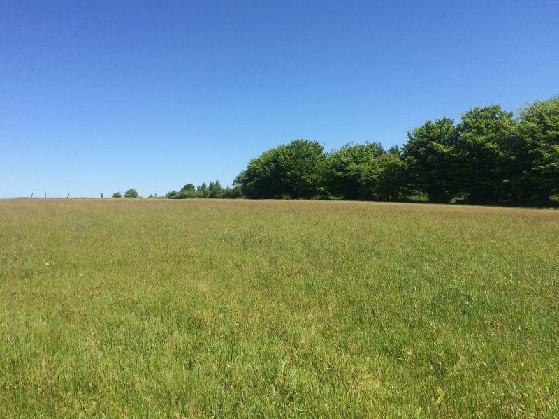 Land Commercial for sale in 11.71 acres, Ynysybwl, Pontypridd