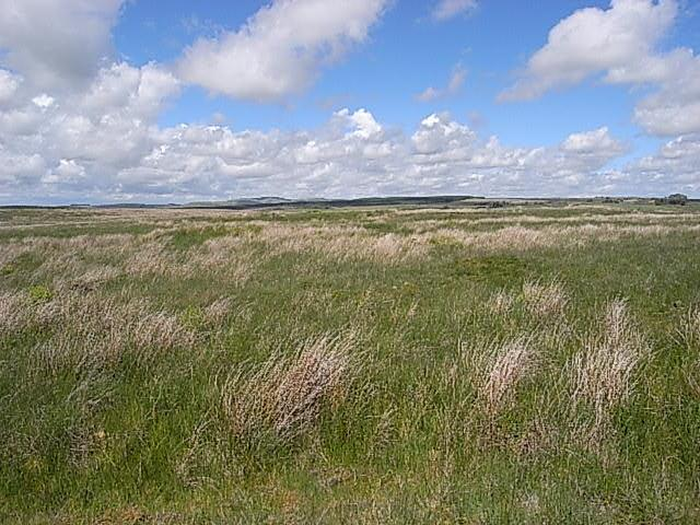 Farm Land Commercial for sale in Waterbeck, Lockerbie DG11