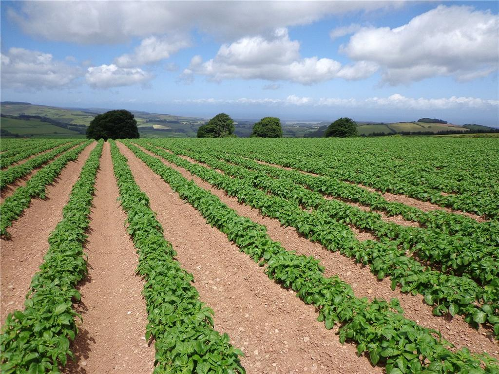 Land Commercial for sale in Brendon Hill, Watchet, Somerset, TA23