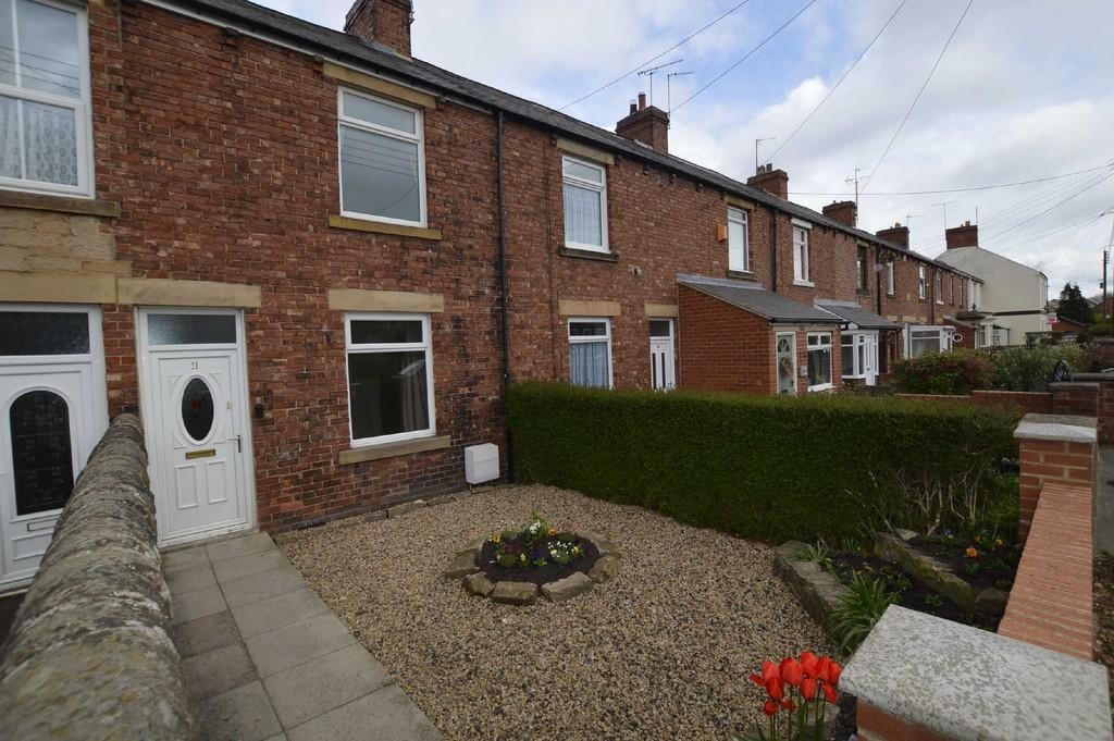 2 Bedrooms Terraced House for sale in Victoria Tce, Newcastle Upon Tyne