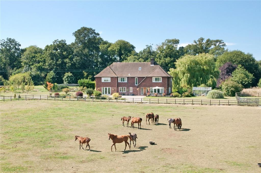 7 Bedrooms House for sale in Locks Lane, Sparsholt, Winchester, Hampshire