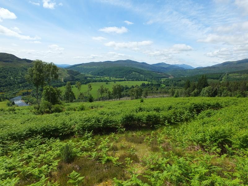 Land Commercial for sale in Erchless Forest East, Nr Beauly, Inverness-shire