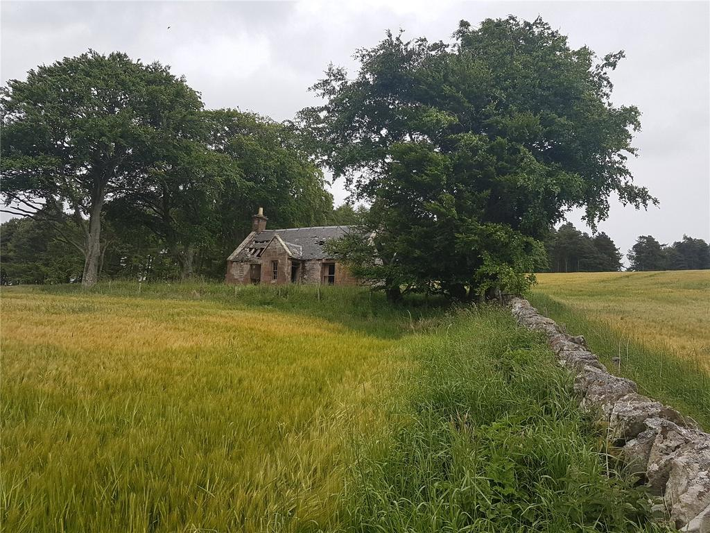 Detached House for sale in Strathella Cottage, Farnell, By Brechin, Angus