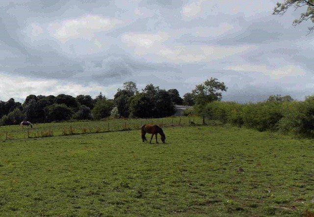 Land Commercial for sale in West Bankside Farm Plot 4, Geirston Road, Kilbirnie, Ayrshire