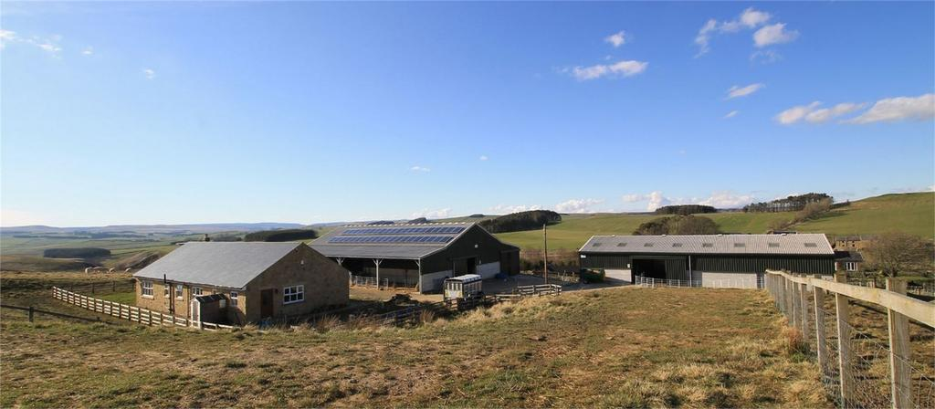 Land Commercial for sale in Liberty Hill Farm, Raylees, Elsdon, Northumberland