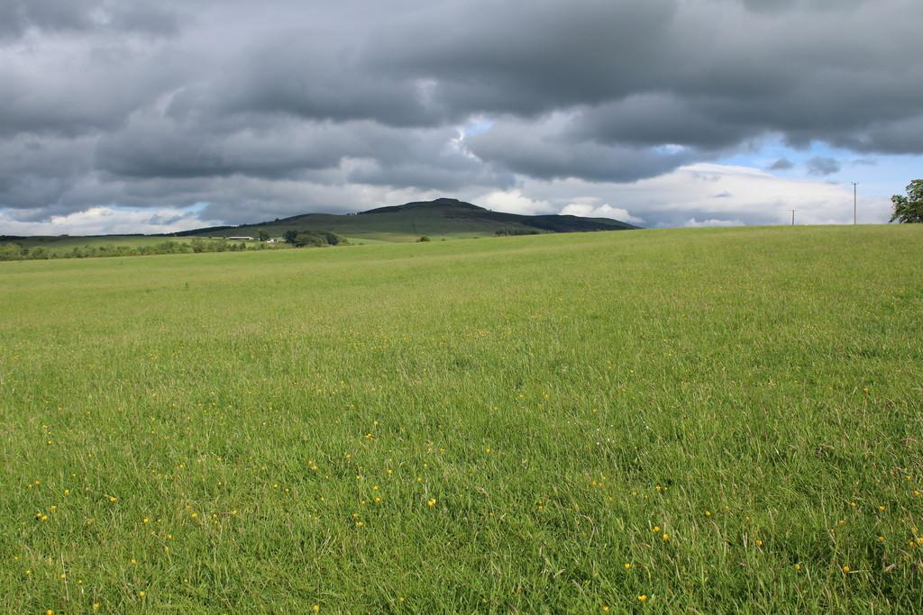 Land Commercial for sale in Land near Denholm, Hawick