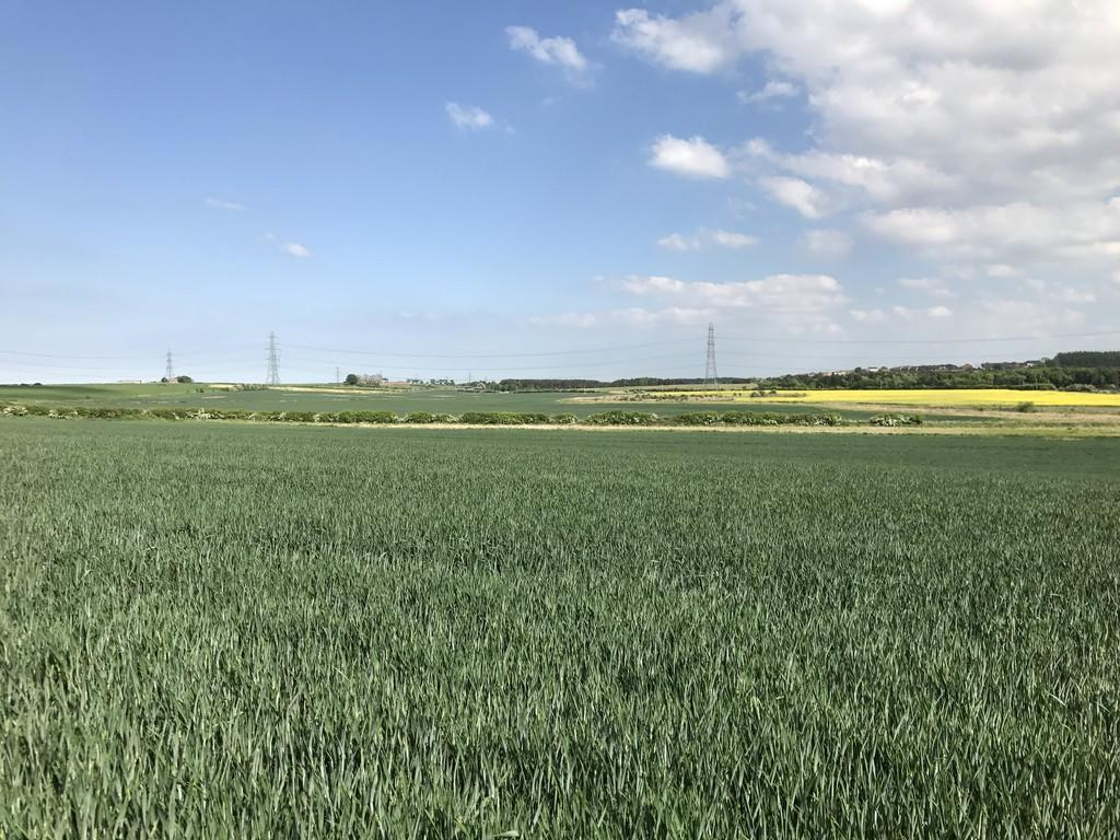 Land Commercial for sale in Land At Wheatley Hill, Durham