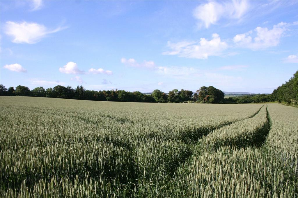 Land Commercial for sale in Lot 1 - Overfield, Haddington, East Lothian