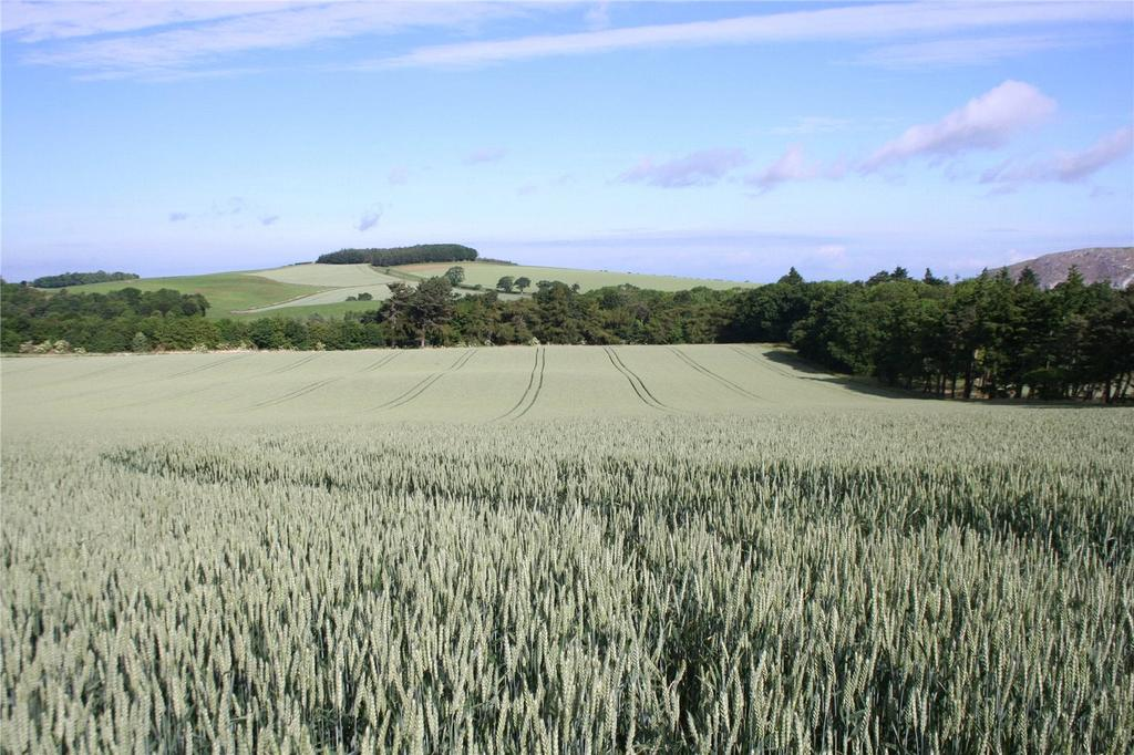 Land Commercial for sale in Lot 2 - Overfield, Haddington, East Lothian