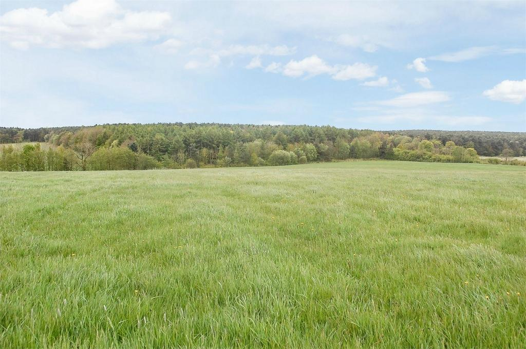 Land Commercial for sale in Wingate, Wingate, County Durham