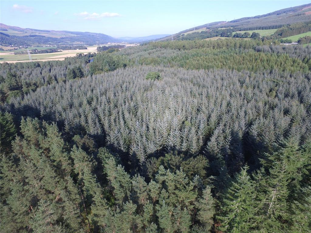 Land Commercial for sale in Bolfracks Estate, Aberfeldy, Perthshire