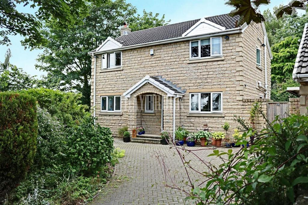 3 Bedrooms Detached House for sale in The Paddock, Hemingfield
