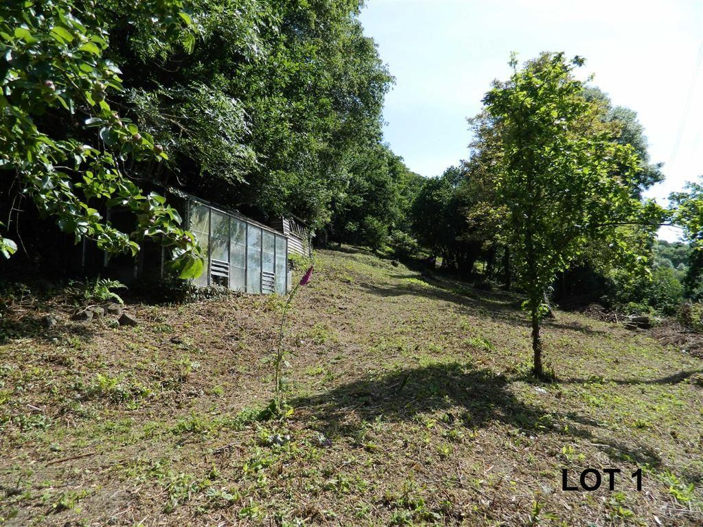 Land Commercial for sale in Nadderwater, Exeter, Devon, EX4