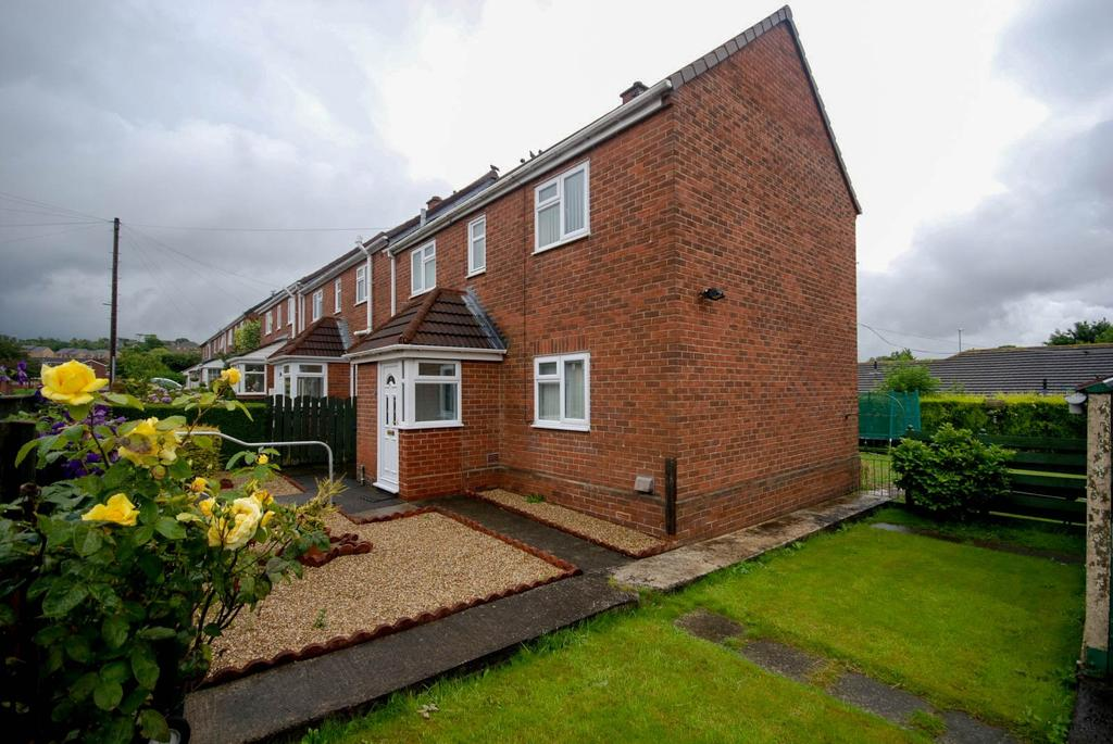 3 Bedrooms Terraced House for sale in Mount Road, Birtley