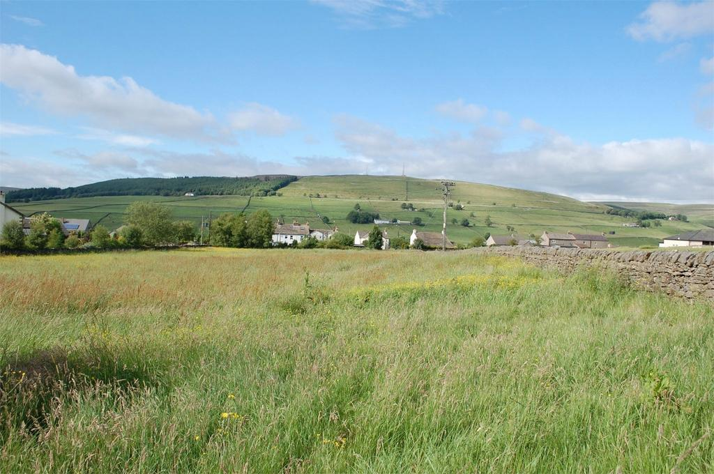 Farm Land Commercial for sale in Land at Clitheroe, Alston, Cumbria