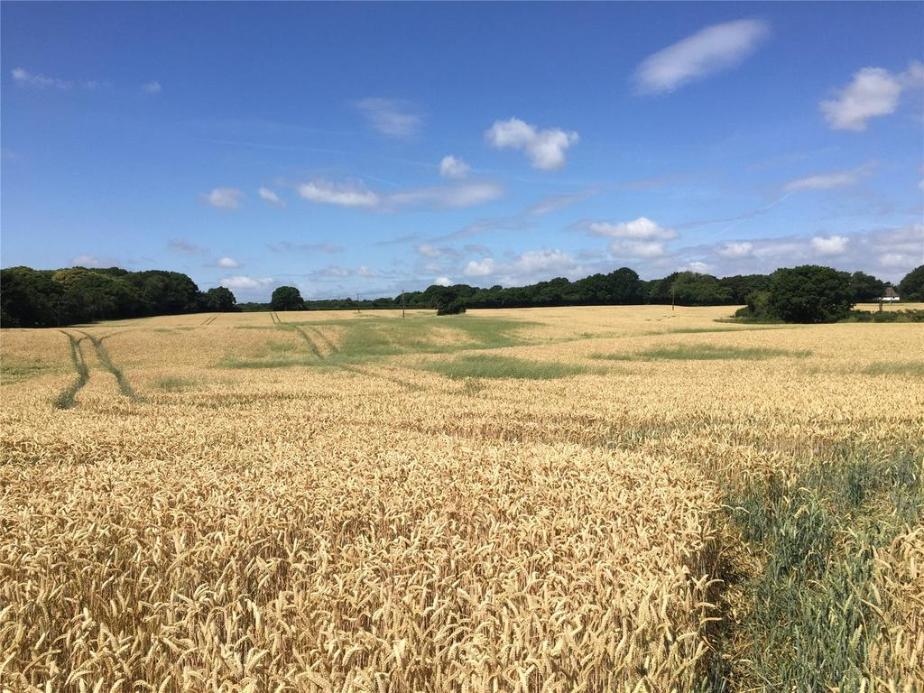 Land Commercial for sale in Bonnington, Ashford, Kent, TN25