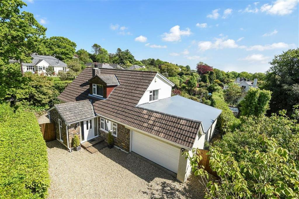 4 Bedrooms Detached House for sale in Iron Mine Lane, Dousland, Devon