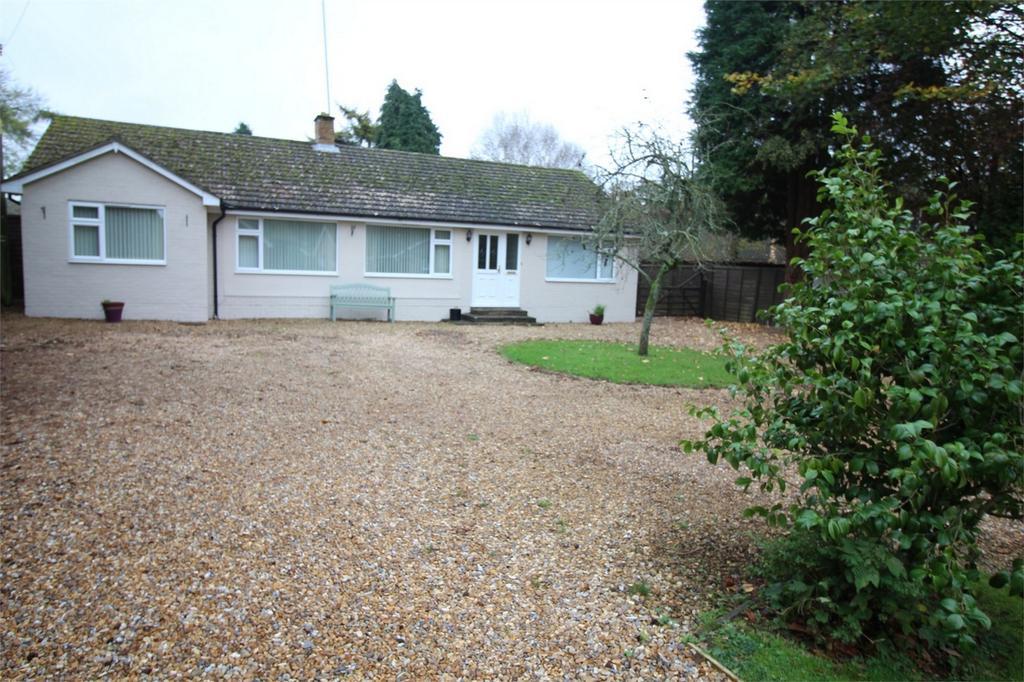 4 Bedrooms Detached Bungalow for sale in Medstead, Alton, Hampshire