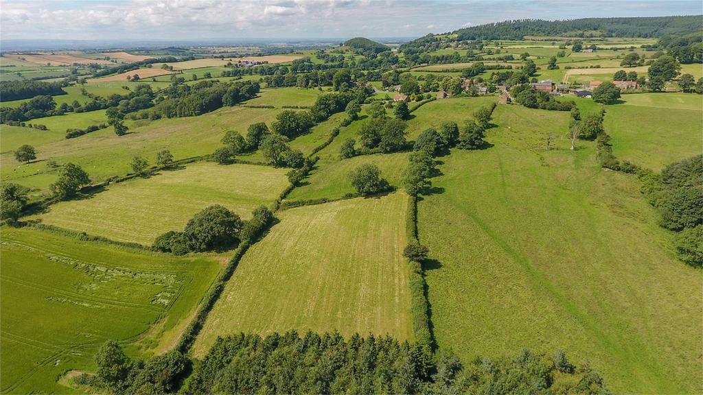 Land Commercial for sale in Nether Silton, Thirsk, North Yorkshire