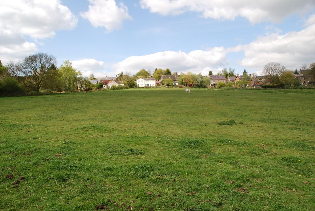 Land Commercial for sale in Paddock Land at Helmdon
