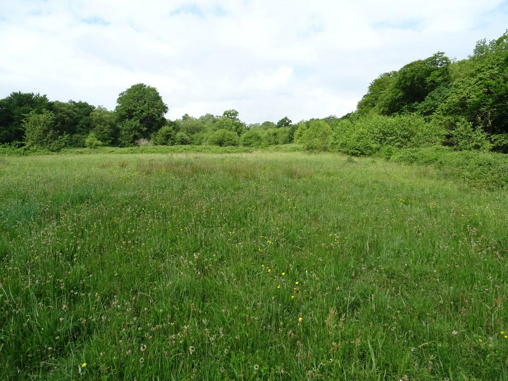 Land Commercial for sale in Approximately 17.184 Acres of Land at Groeswen, Caerphilly