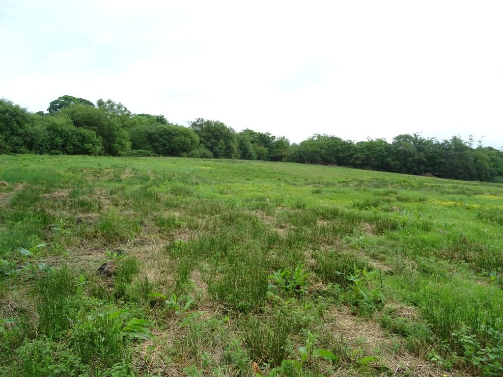 Land Commercial for sale in Approximately 11.65 Acres of Land at Groeswen, Caerphilly