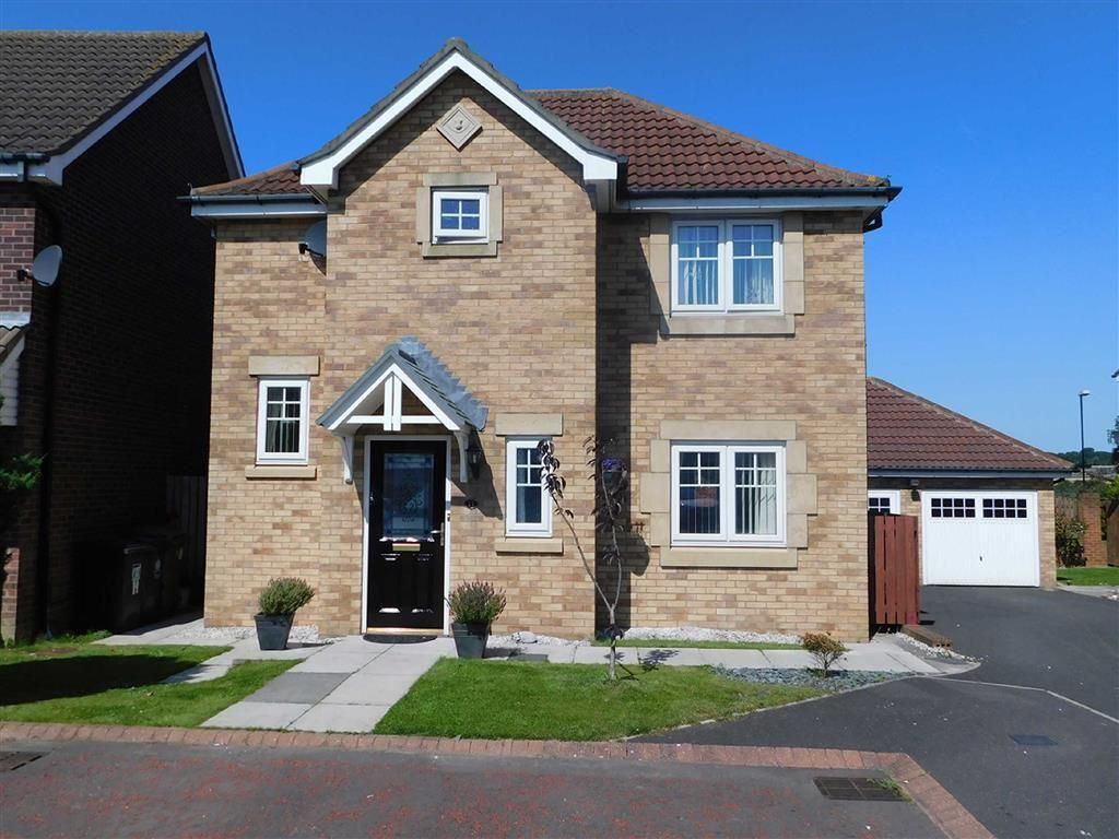 3 Bedrooms Detached House for sale in Forest Gate, Palmersville, Newcastle Upon Tyne, NE12