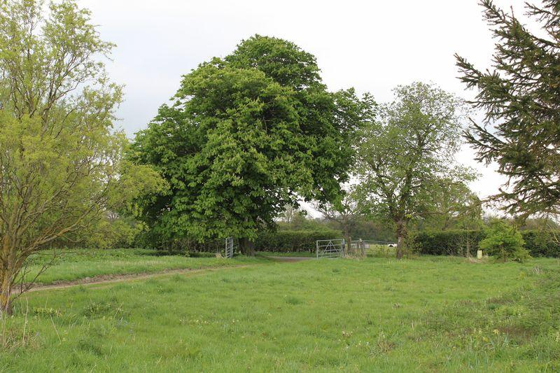 Land Commercial for sale in Building Plot, Lodge Farm, Lenton Road , Pickworth